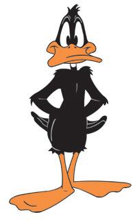 Daffy-1-[1]